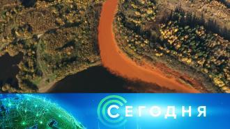 28октября 2020года. 13:00.28октября 2020года. 13:00.НТВ.Ru: новости, видео, программы телеканала НТВ
