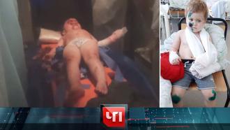 4 ноября 2020 года.4 ноября 2020 года.НТВ.Ru: новости, видео, программы телеканала НТВ