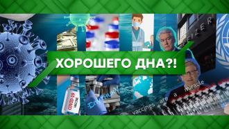 Выпуск от 12ноября 2020года.Хорошего дна?!НТВ.Ru: новости, видео, программы телеканала НТВ