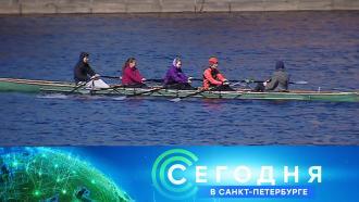12 ноября 2020 года. 19:20.12 ноября 2020 года. 19:20.НТВ.Ru: новости, видео, программы телеканала НТВ