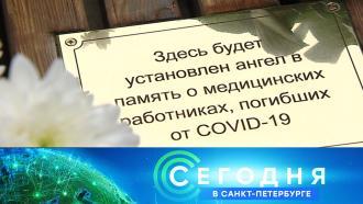 13 ноября 2020 года. 16:15.13 ноября 2020 года. 16:15.НТВ.Ru: новости, видео, программы телеканала НТВ