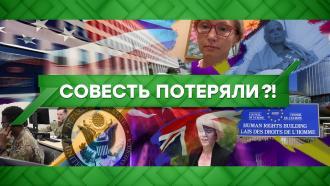 Выпуск от 17ноября 2020года.Совесть потеряли?!НТВ.Ru: новости, видео, программы телеканала НТВ