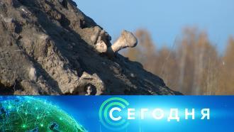23ноября 2020года. 13:00.23ноября 2020года. 13:00.НТВ.Ru: новости, видео, программы телеканала НТВ