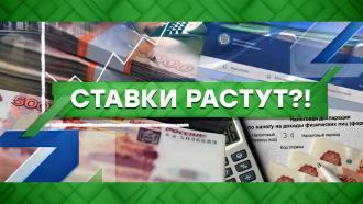 Выпуск от 24 ноября 2020 года.Ставки растут?!НТВ.Ru: новости, видео, программы телеканала НТВ