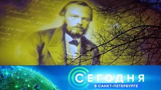 24 ноября 2020 года. 19:20.24 ноября 2020 года. 19:20.НТВ.Ru: новости, видео, программы телеканала НТВ