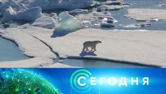 25 ноября 2020 года. 13:00.25 ноября 2020 года. 13:00.НТВ.Ru: новости, видео, программы телеканала НТВ