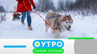 25ноября 2020года.25ноября 2020года.НТВ.Ru: новости, видео, программы телеканала НТВ