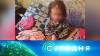25 ноября 2020 года. 23:35.25 ноября 2020 года. 23:35.НТВ.Ru: новости, видео, программы телеканала НТВ