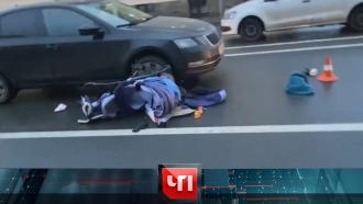 26 ноября 2020 года.26 ноября 2020 года.НТВ.Ru: новости, видео, программы телеканала НТВ