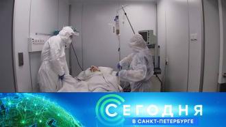 26 ноября 2020 года. 16:15.26 ноября 2020 года. 16:15.НТВ.Ru: новости, видео, программы телеканала НТВ