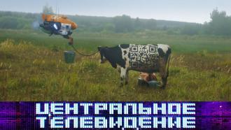 Выпуск от 28 ноября 2020 года.Выпуск от 28 ноября 2020 года.НТВ.Ru: новости, видео, программы телеканала НТВ