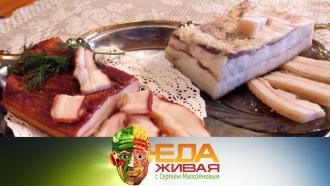 Специальный выпуск программы «Живая еда» сответами на самые интересные вопросы телезрителей— всубботу в11:00