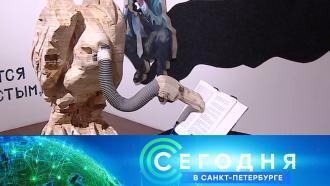 2 декабря 2020 года. 16:15.2 декабря 2020 года. 16:15.НТВ.Ru: новости, видео, программы телеканала НТВ