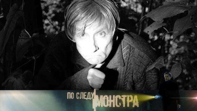 Выпуск от 5 декабря 2020 года.«В тихом омуте…».НТВ.Ru: новости, видео, программы телеканала НТВ