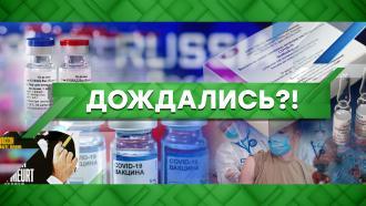 Выпуск от 7 декабря 2020 года.Дождались?!НТВ.Ru: новости, видео, программы телеканала НТВ