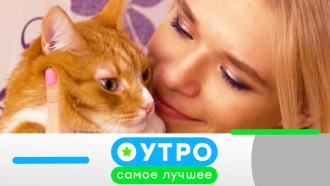 10 декабря 2020 года.10 декабря 2020 года.НТВ.Ru: новости, видео, программы телеканала НТВ