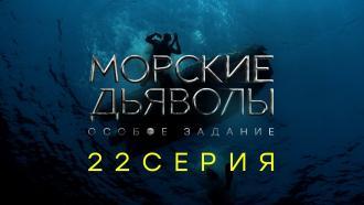 «Морские дьяволы. Особое задание». 22-я серия.22-я серия.НТВ.Ru: новости, видео, программы телеканала НТВ