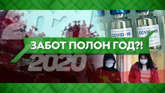Выпуск от 30декабря 2020года.Забот полон год?!НТВ.Ru: новости, видео, программы телеканала НТВ