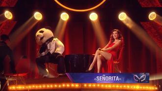 Панда иРегина Тодоренко: Señorita