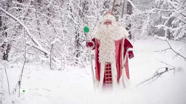 Большое путешествие Деда Мороза вместе сНТВ— 2019.Дед Мороз, НТВ, Новый год, благотворительность.НТВ.Ru: новости, видео, программы телеканала НТВ