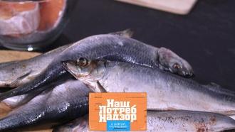 Как определять свежесть рыбы ина что способна обычная микроволновка? «НашПотребНадзор»— ввоскресенье на НТВ