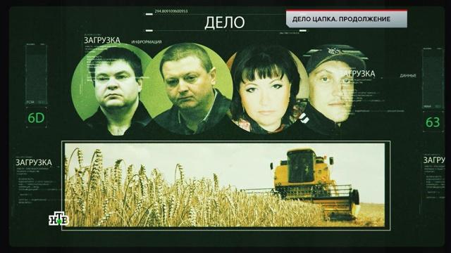 «Дело Цапка. Продолжение».«Дело Цапка. Продолжение».НТВ.Ru: новости, видео, программы телеканала НТВ