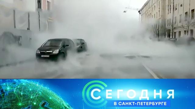 5 февраля 2020 года. 19:20.5 февраля 2020 года. 19:20.НТВ.Ru: новости, видео, программы телеканала НТВ