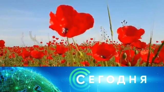 10 февраля 2020 года. 16:00.10 февраля 2020 года. 16:00.НТВ.Ru: новости, видео, программы телеканала НТВ