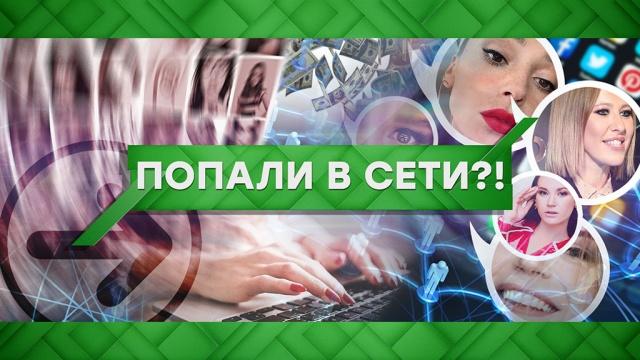 Выпуск от 10 февраля 2020 года.Попали в сети?!НТВ.Ru: новости, видео, программы телеканала НТВ
