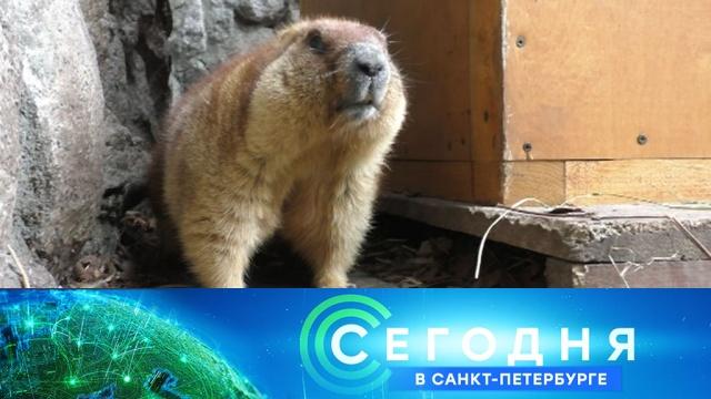 11 февраля 2020 года. 19:20.11 февраля 2020 года. 19:20.НТВ.Ru: новости, видео, программы телеканала НТВ