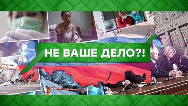 Выпуск от 12февраля 2020 года.Не ваше дело?!НТВ.Ru: новости, видео, программы телеканала НТВ