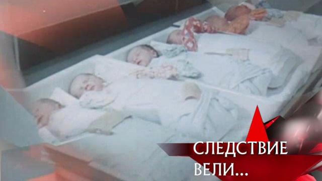 «Убийство в роддоме».«Убийство в роддоме».НТВ.Ru: новости, видео, программы телеканала НТВ