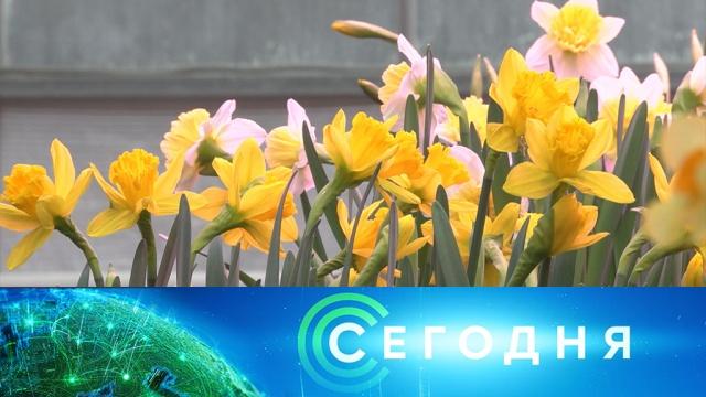 15 февраля 2020 года. 10:00.15 февраля 2020 года. 10:00.НТВ.Ru: новости, видео, программы телеканала НТВ