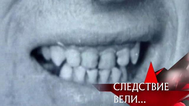 «Челюсти».«Челюсти».НТВ.Ru: новости, видео, программы телеканала НТВ