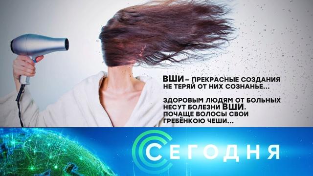 19февраля 2020года. 16:00.19февраля 2020года. 16:00.НТВ.Ru: новости, видео, программы телеканала НТВ