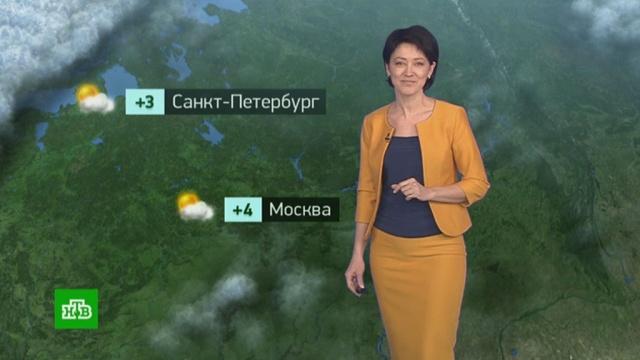 21 февраля 2020 года. 00:00.21 февраля 2020 года. 00:00.НТВ.Ru: новости, видео, программы телеканала НТВ