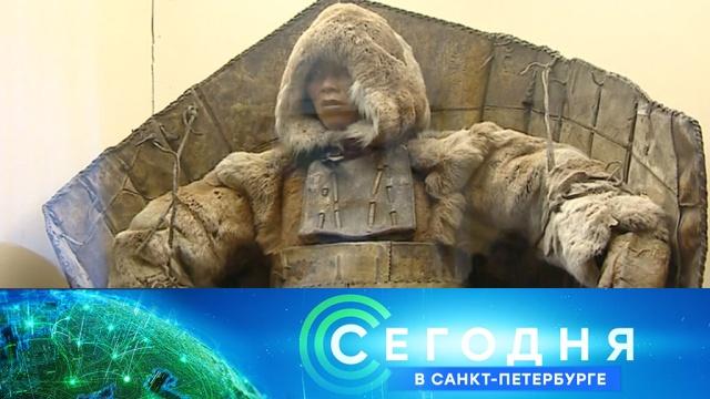 27 февраля 2020 года. 16:15.27 февраля 2020 года. 16:15.НТВ.Ru: новости, видео, программы телеканала НТВ