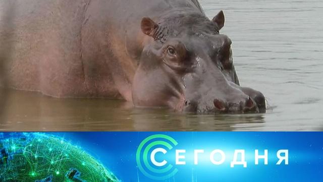 28 февраля 2020 года. 10:00.28 февраля 2020 года. 10:00.НТВ.Ru: новости, видео, программы телеканала НТВ