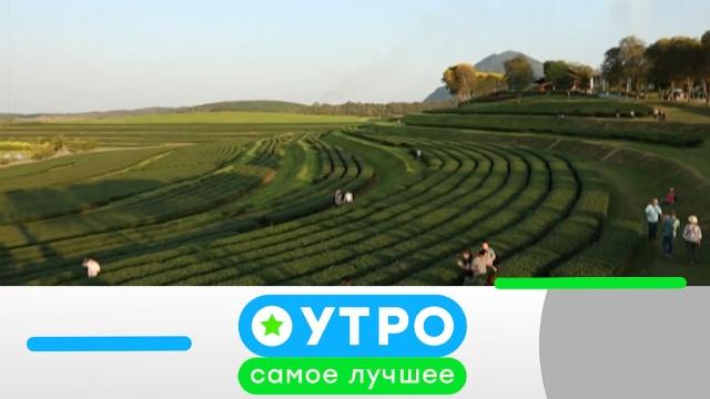 3марта 2020года.3марта 2020года.НТВ.Ru: новости, видео, программы телеканала НТВ