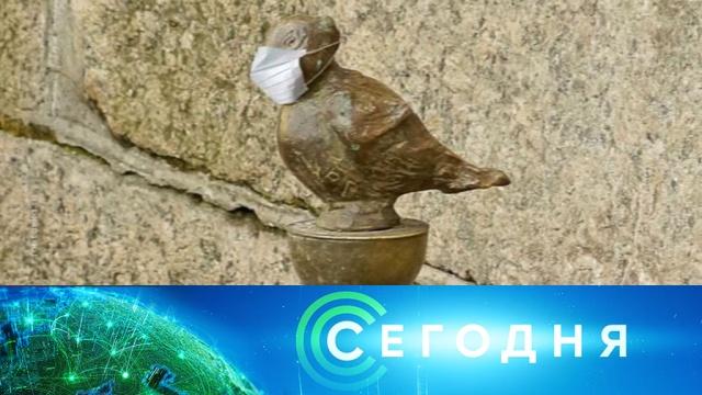 10 марта 2020 года. 19:20.10 марта 2020 года. 19:20.НТВ.Ru: новости, видео, программы телеканала НТВ