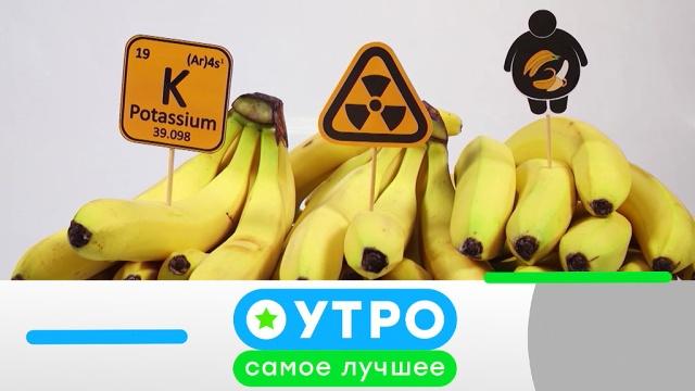 13 марта 2020 года.13 марта 2020 года.НТВ.Ru: новости, видео, программы телеканала НТВ