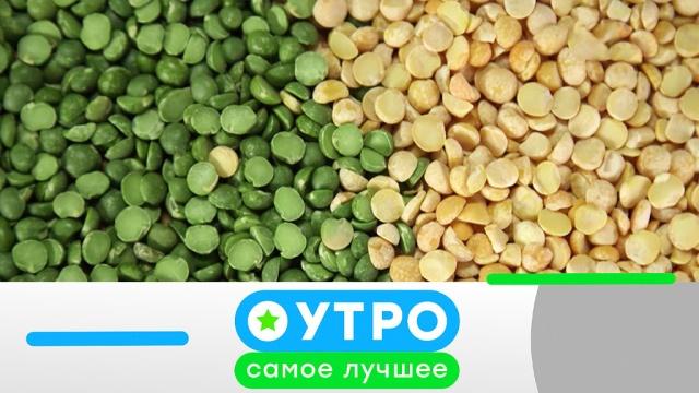 17 марта 2020 года.17 марта 2020 года.НТВ.Ru: новости, видео, программы телеканала НТВ