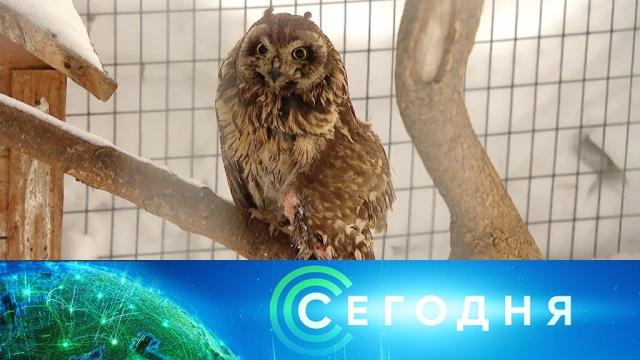 22 марта 2020 года. 10:00.22 марта 2020 года. 10:00.НТВ.Ru: новости, видео, программы телеканала НТВ