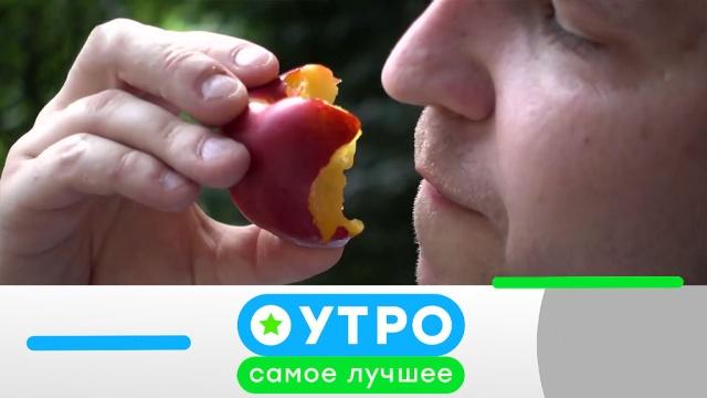 24марта 2020года.24марта 2020года.НТВ.Ru: новости, видео, программы телеканала НТВ