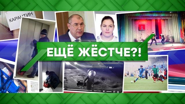 Выпуск от 25 марта 2020 года.Еще жестче?!НТВ.Ru: новости, видео, программы телеканала НТВ
