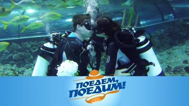 Выпуск от 28 марта 2020 года.Югра: подводная свадьба с акулами, рисунки нефтью, киса и оленина в бересте с пшенным ризотто.НТВ.Ru: новости, видео, программы телеканала НТВ