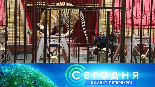 25 марта 2020 года. 19:20.25 марта 2020 года. 19:20.НТВ.Ru: новости, видео, программы телеканала НТВ