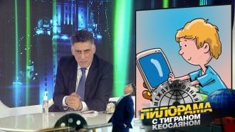 Чем, по мнению CNN, заняты российские <nobr>интернет-тролли</nobr>? «Международная пилорама»— сегодня на НТВ