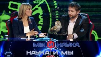 Выпуск от 6 апреля 2020 года.Через 10 лет появится бесплатное электричество?НТВ.Ru: новости, видео, программы телеканала НТВ