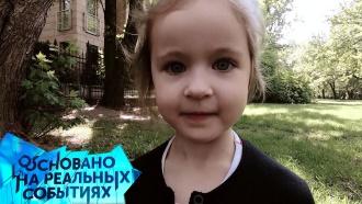 Как дочерей из русской семьи шведы отдали арабским беженцам? «Основано на реальных событиях»— сегодня на НТВ